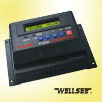 Wellsee 12/24V - 20A