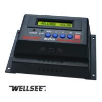 Wellsee 12/24V - 25A