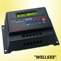 Wellsee 12/24V - 60A